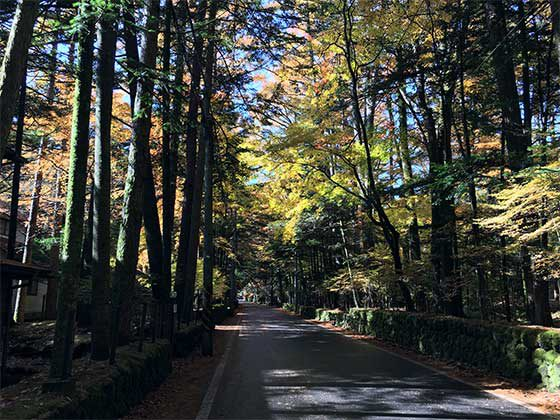 軽井沢の別荘地